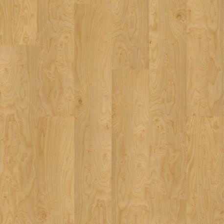 design klebekork apfelbirke 16200501 vita classic online. Black Bedroom Furniture Sets. Home Design Ideas