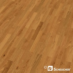 Oak Knotty Scheucher BILAflor 500 Parquet Flooring