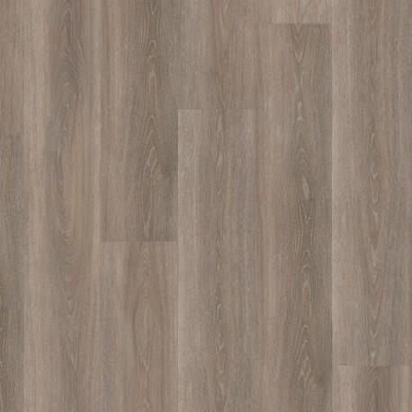 Wineo 400 wood Spirit oak Silver - Klebevinyl