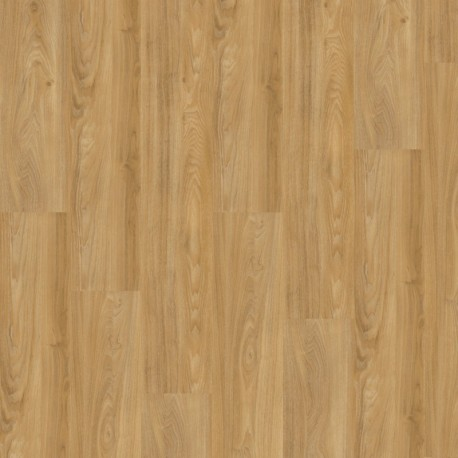 Wineo 400 wood Summer oak Golden- Klebevinyl