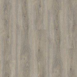 Wineo 400 wood XL Memory oak silver - Klick Vinyl