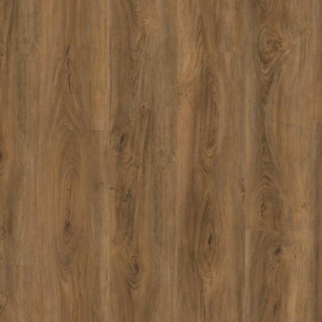 Wineo 800 wood XL Cyprus dark oak - dryback