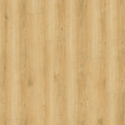 Wineo 800 Wood Wheat Golden Oak Eiche Klick Vinyl Designboden