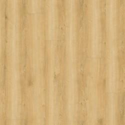 Wineo 800 wood Wheat Golden Oak - Klick Vinyl