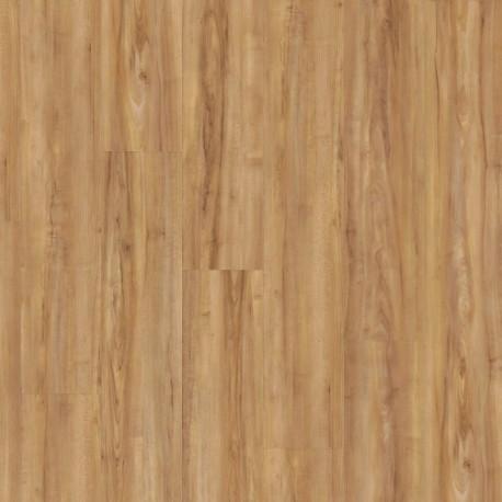 Wineo 800 wood Honey warm Maple  Click Vinyl