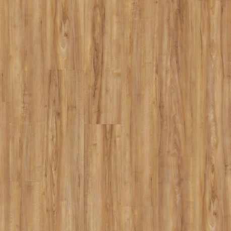 Wineo 800 wood Honey warm Maple - Klick Vinyl