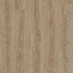 Wineo 800 wood XL Clay Calm oak- Klick Vinyl