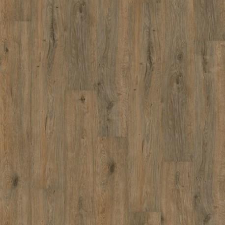 Wineo 1000 Wood Purline Valley Oak Soil Glue Down Vinyl