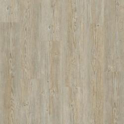 Tarkett LVT Click 30 Brushed Pine Grey Eiche Klick Vinyl